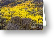 Turning Leaves Greeting Cards - Aspen Outcropping Greeting Card by L J Oakes
