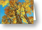 Fall Cards Greeting Cards - Aspen Sky High 2 Greeting Card by Gary Kim