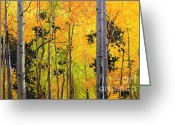 Landscape Posters Painting Greeting Cards - Aspen Trees Greeting Card by Gary Kim