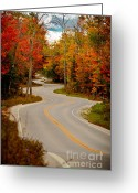 Winding Road Greeting Cards - Asphalt Creek in Door County Greeting Card by Shutter Happens Photography