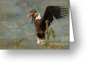 Bald Eagle Digital Art Greeting Cards - At War Greeting Card by Reflective Moments  Photography and Digital Art Images