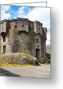 Colour Image Greeting Cards - Athlone castle Greeting Card by Gabriela Insuratelu