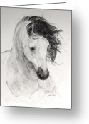 Andalusian Horse Greeting Cards - Atinado II Greeting Card by Janina  Suuronen
