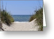 Oats Greeting Cards - Atlantic Access Greeting Card by Al Powell Photography USA