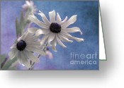 Texture Flower Photo Greeting Cards - Attachement - s09at01 Greeting Card by Variance Collections
