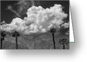 Gray Sky Greeting Cards - AUGUST CLOUDS Palm Springs Greeting Card by William Dey