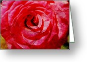 Altered Photograph Greeting Cards - Aunt Loris Roses Greeting Card by Danielle Miller