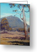 Signed Greeting Cards - Australian Summer Hartley Greeting Card by Graham Gercken