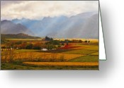 Vineyard Digital Art Greeting Cards - Autumn - Hex-river Valley Greeting Card by Basie Van Zyl