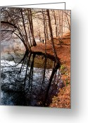 Jogging Photo Greeting Cards - Autumn - 4 Greeting Card by Okan YILMAZ