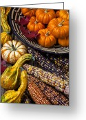 Indian Yellow Greeting Cards - Autumn abundance Greeting Card by Garry Gay