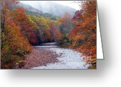 Trout Digital Art Greeting Cards - Autumn along Williams River Greeting Card by Thomas R Fletcher