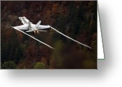 Superhornet Greeting Cards - Autumn Greeting Card by Angel  Tarantella