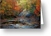 Superb Greeting Cards - Autumn at its Best Greeting Card by Robert Harmon