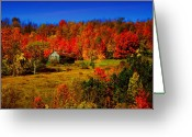 Old Barns Photo Greeting Cards - Autumn Barn Greeting Card by Emily Stauring