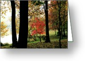 Homesickness Greeting Cards - Autumn by the Lake Greeting Card by Douglas Barnett