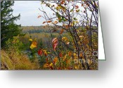 Autumn Scenes Greeting Cards - Autumn by the river Greeting Card by Jim Sauchyn