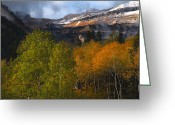 Mountain Summit Greeting Cards - Autumn Colors in the Wasatch Mountains Greeting Card by Utah Images