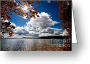 Leaves Photo Greeting Cards - Autumn  Confidential  Greeting Card by Bob Orsillo