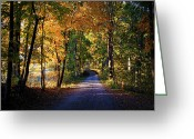 "\\\\\\\""boone County Photo Greeting Cards - Autumn Country Lane Greeting Card by Cricket Hackmann"