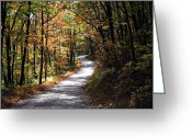 Autumn Roads Greeting Cards - Autumn Country lane Greeting Card by David Dehner