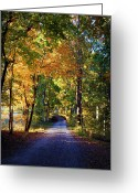 "\\\\\\\""boone County Photo Greeting Cards - Autumn Country Lane II Greeting Card by Cricket Hackmann"