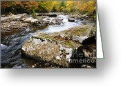 Williams Greeting Cards - Autumn Cranberry River Greeting Card by Thomas R Fletcher