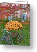Indiana Autumn Greeting Cards - Autumn Display I Greeting Card by Steven Ainsworth
