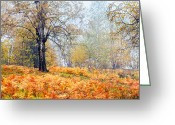 Evgeni Dinev Greeting Cards - Autumn Dreams Greeting Card by Evgeni Dinev