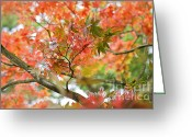 Reds Greeting Cards - Autumn Fire Greeting Card by Jacky Parker