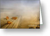 Leave Greeting Cards - Autumn fog Greeting Card by Veikko Suikkanen