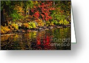 Fall Nature Greeting Cards - Autumn forest and river landscape Greeting Card by Elena Elisseeva