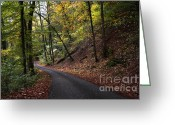 Bruno Santoro Greeting Cards - Autumn Forest Greeting Card by Bruno Santoro