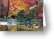 Backlit Greeting Cards - Autumn Glow in Manito Park Greeting Card by Carol Groenen