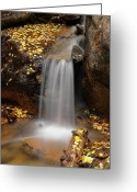 Pouring Greeting Cards - Autumn Gold and Waterfall Greeting Card by Leland Howard