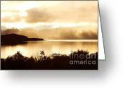 Light And Water Greeting Cards - Autumn Gold Greeting Card by Linde Townsend