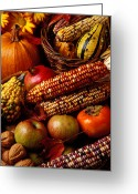 Persimmons Greeting Cards - Autumn harvest  Greeting Card by Garry Gay