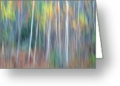 Abstract Impressionism Photo Greeting Cards - Autumn Impression Greeting Card by Bill Morgenstern