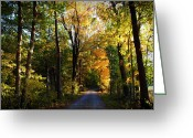 "\\\\\\\""boone County Photo Greeting Cards - Autumn in Missouri Greeting Card by Cricket Hackmann"