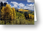 Mountains Greeting Cards - Autumn in New Mexico Greeting Card by Kurt Van Wagner