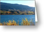Mountain Vineyards Greeting Cards - Autumn In Oyama 2 Greeting Card by Will Borden