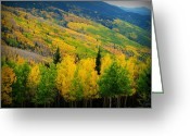 Southern Rocky Mountains Greeting Cards - Autumn in the Rockies Greeting Card by Aaron Burrows