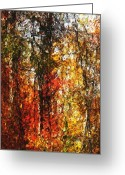 Photo Manipulation Greeting Cards - Autumn in the Woods Greeting Card by David Lane