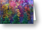 Reds Of Autumn Photo Greeting Cards - Autumn in Virginia Greeting Card by Nabila Khanam