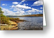 Wild Rivers Greeting Cards - Autumn lake shore Greeting Card by Elena Elisseeva