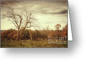 Green Day Greeting Cards - Autumn landscape in late November Greeting Card by Sandra Cunningham