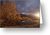 Autumn Scenes Greeting Cards - Autumn Landscape Near Telluride Greeting Card by Annie Griffiths