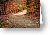 Hiking Greeting Cards - Autumn landscape with a path Greeting Card by Elena Elisseeva