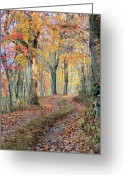 Country Lanes Photo Greeting Cards - Autumn Lane Greeting Card by Heavens View Photography