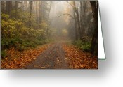 Country Lane Greeting Cards - Autumn Lane Greeting Card by Mike  Dawson